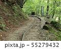 西沢渓谷 旧森林軌道 遊歩道 55279432