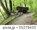西沢渓谷 旧森林軌道 遊歩道 55279435