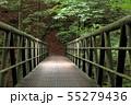 西沢渓谷 大久保沢の橋 55279436