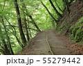 西沢渓谷 旧森林軌道 遊歩道 55279442