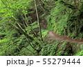 西沢渓谷 旧森林軌道 遊歩道 55279444