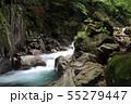 西沢渓谷 カエル岩 55279447