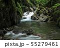 西沢渓谷 カエル岩 55279461
