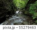 西沢渓谷 カエル岩 55279463
