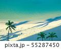 海 55287450