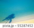 海 55287452
