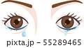 目の症状 涙目 流涙症  55289465