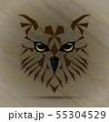 Owl bird low poly design 55304529