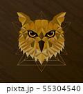 Owl bird low poly design 55304540