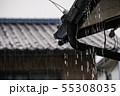 大雨 55308035