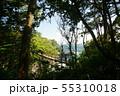 城ヶ崎海岸 橋立吊橋 55310018