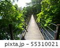 城ヶ崎海岸 橋立吊橋 55310021