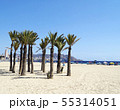 Poniente beach in Benidorm 55314051