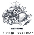 Vector composition of pomegranate fruits, flowers, branches. 55314627