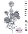 Vector hand drawn Thistle or Carduus plant, leaf, bud and flower isolated on white background. 55314712