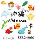 沖縄 観光 名物 イラストセット 55324960