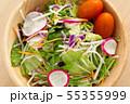 野菜サラダ 55355999
