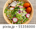 野菜サラダ 55356000