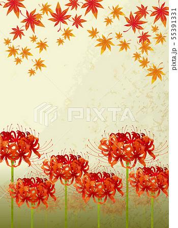 紅葉と彼岸花 55391331