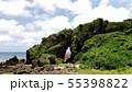 久米島のミーフガー 55398822