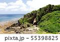 久米島のミーフガー 55398825