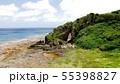 久米島のミーフガー 55398827