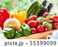 夏野菜・ラタトゥイユの材料 55399099
