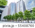 【東京都】丸の内の街並み 55408760