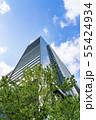 【東京都】丸の内 オフィス街の風景 55424934
