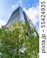 【東京都】丸の内 オフィス街の風景 55424935