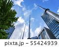 【東京都】丸の内 オフィス街の風景 55424939
