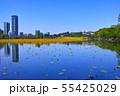 春の東京都上野公園の不忍池 55425029