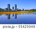 春の東京都上野公園の不忍池 55425049