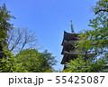 新緑の東京都上野公園の五重塔 55425087