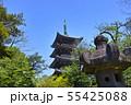 新緑の東京都上野公園の五重塔と石灯籠 55425088