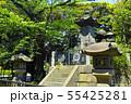 新緑の東京都上野公園にある彰義隊の墓 55425281