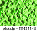 抽象的な背景 三角形  55425348