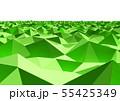 抽象的な背景 三角形  55425349