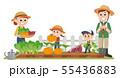 家庭菜園 秋 55436883