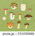 食べられるキノコ 55436886