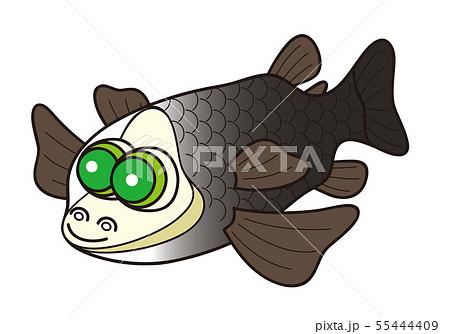 深海魚 デメニギス イラスト みやもとかずみ 55444409