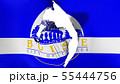 Damaged Boise capital city flag 55444756