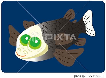 デメニギス 深海魚 キャラクター イラスト 55446066
