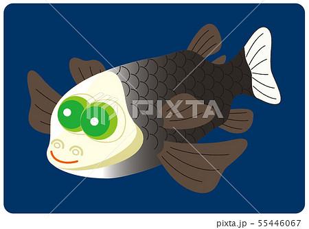 深海魚 デメニギス イラスト みやもとかずみ 55446067