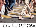 feet of pedestrians walking on the crosswalk 55447030