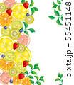 果物:水彩風 55451148
