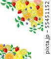 果物:水彩風 55451152