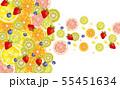 水彩:果物 55451634