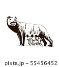 Capitoline Wolf. Rome city symbol. she-wolf t 55456452