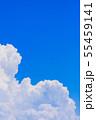 夏の清々しい青空 55459141